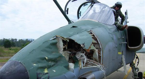 Nhận được điện khẩn về vụ va chạm giữa không trung, ai cũng giật mình khi biết hung thủ gây lõm đầu máy bay - Ảnh 3.