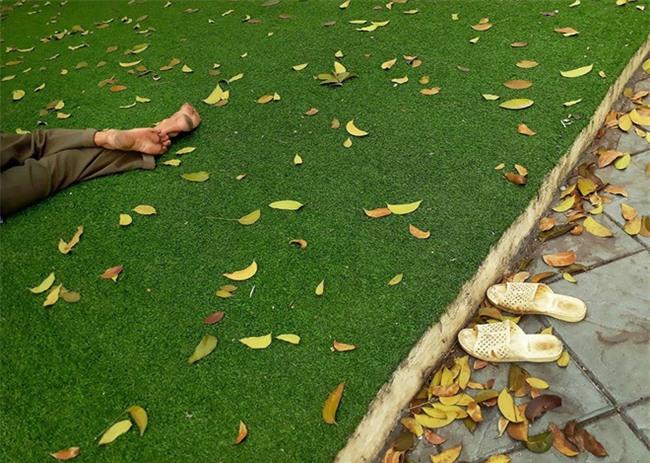 Người bán hàng rong tranh thủ ngủ trưa ở một công viên dành cho trẻ em vẫn không quên bỏ dép ngoài bãi cỏ khiến dân mạng xúc động - Ảnh 2.