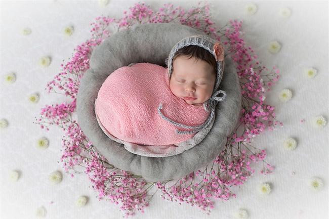 Ngất ngây với chùm ảnh những em bé sơ sinh cuộn tròn say ngủ - Ảnh 5.