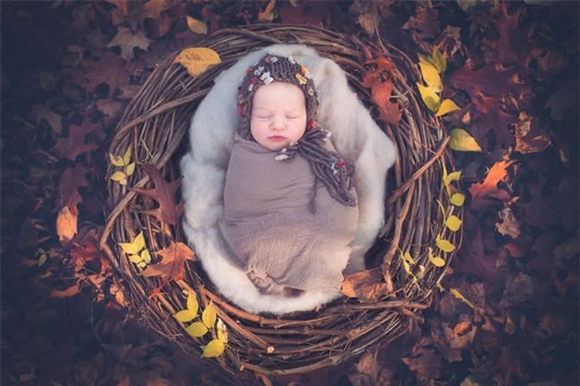 Ngất ngây với chùm ảnh những em bé sơ sinh cuộn tròn say ngủ - Ảnh 11.