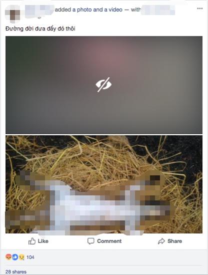 Nam thanh niên nhốt mèo vào lồng, dìm xuống ao cho đến chết rồi làm thịt gây phẫn nộ - Ảnh 1.