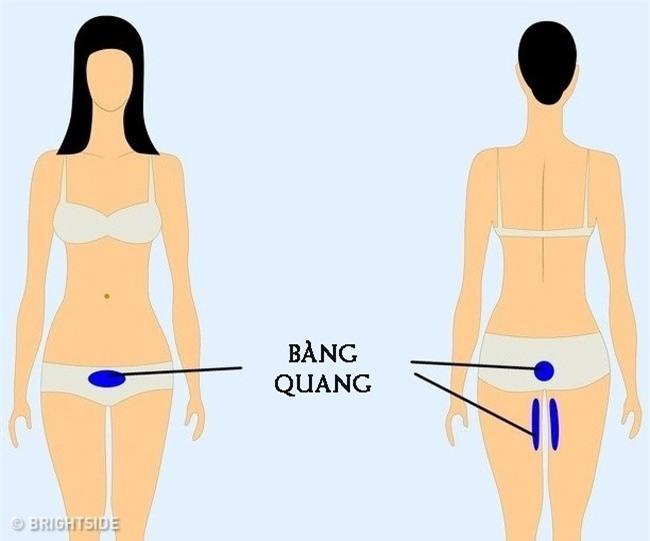 Chuyên gia khuyên 9 vị trí nếu thấy đau thì bạn nên cẩn trọng và đi khám càng sớm càng tốt-9