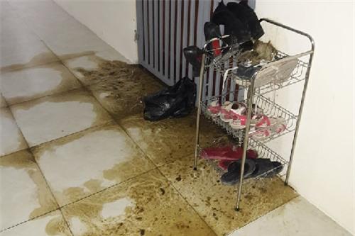 """Nữ phóng viên bị """"khủng bố"""" bằng phân bò trước cửa phòng - Ảnh 1."""