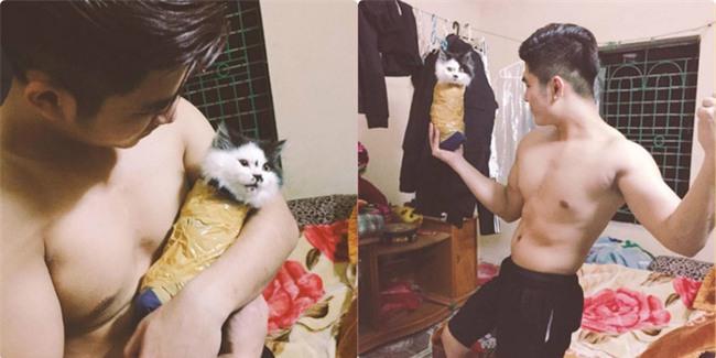 Bị dân mạng phẫn nộ vì hành hạ mèo bằng cuộn băng dính, người chủ lên tiếng  - Ảnh 1.