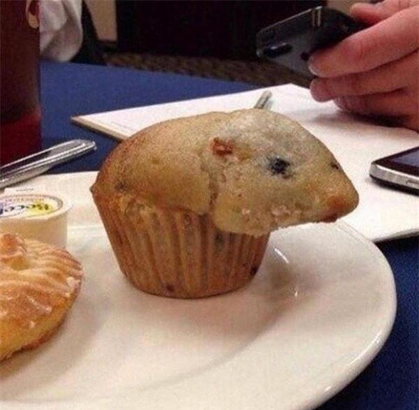 Không ít người sẽ rùng mình nghĩ rằng... có một chú chuột bên trong cái bánh. Nhưng thực chất đây chỉ là một chiếc bánh làm sai công thức và cho quá nhiều bột