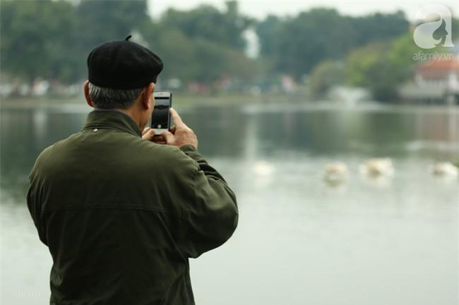 Một cá thể Thiên Nga được thả tại hồ Thiền Quang bị mất tích nhiều ngày qua - Ảnh 3.