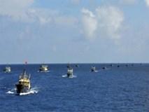 Video Tàu Trung Quốc đánh cá phi pháp ở Trường Sa