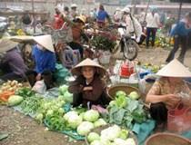 Bữa cơm người nghèo teo tóp vì giá tăng