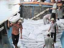 Gạo Việt Nam lại ồ ạt chảy sang Trung Quốc