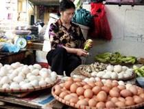 Trung Quốc chi phối 50% trứng gà Việt Nam
