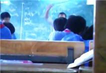 """Rùng mình với clip cô giáo """"quất"""" học sinh bằng roi ngay tại lớp"""