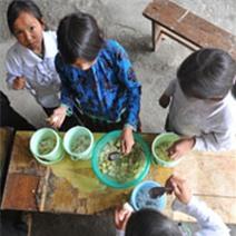 Học sinh vùng cao và bữa cơm canh đậu