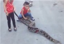 Video: Hai chị em chơi đùa với rắn khổng lồ