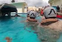 Lính Mỹ ngất xỉu với bài tập nguy hiểm dưới nước