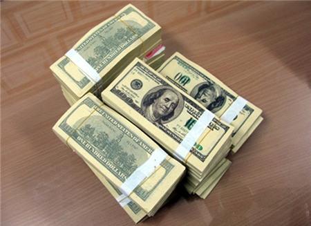 Số đô la giả mà bà Phúc đánh tráo.