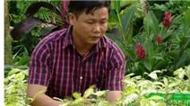 Chàng trai kiếm 5 tỷ đồng mỗi năm từ lá cây