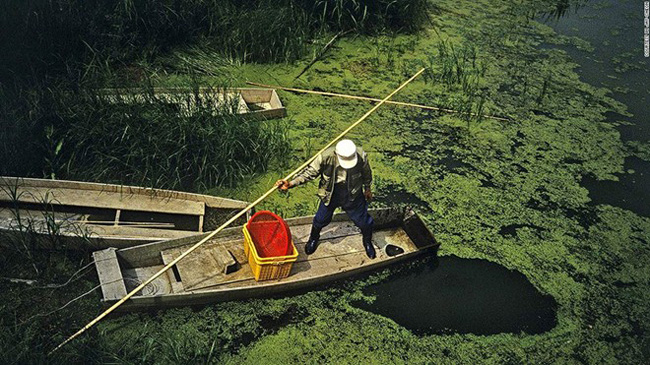 17. Đầm lầy Upo: Đầm lầy Upo trải rộng 5.550 km2 với hơn 1.000 loài động thực vật và đã được bảo vệ từ năm 1998.