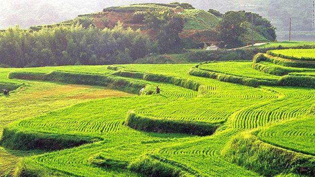 18. Hapcheon Daraknon: Những thửa ruộng bậc thang của Hapcheon ở phía nam tỉnh Gyeongsang tạo ra một khung cảnh tuyệt vời.