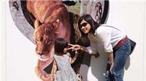 Mẹ Việt tiết lộ chuyện nuôi dạy con sớm của người Nhật