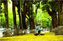 Hình ảnh tuyệt đẹp về mùa thu Hà Nội