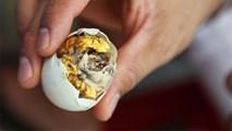 4 món trứng nhiều người không dám nếm của thế giới