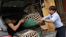 Giám đốc 9X lái Camry bán gà Đông Tảo