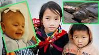 Những tin vui làm ấm lòng người Việt trong đợt rét kỷ lục