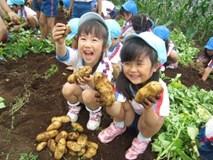 Học sinh Nhật được dạy văn minh công cộng thế nào?