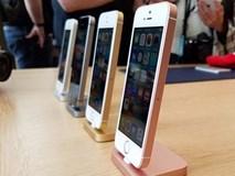 Thời lượng pin iPhone SE tốt hơn cả iPhone 6S và Galaxy S7