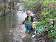 Rau rửa nước ô nhiễm ảnh hưởng thế nào đến sức khỏe người tiêu dùng?