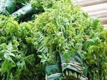 6 loại rau rừng tên lạ tai nhưng ăn dễ nghiện của Tây Bắc