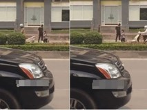 Cô gái hạ mình quỳ xin khóc lóc trước mặt chàng trai trên phố