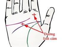 Những điểm trên bàn tay bộc lộ giác quan thứ 6 nhạy bén