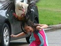 """Mỹ: Bé gái bị tấn công vì """"nhìn đểu"""" ngỗng"""