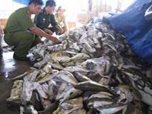 Bắt hơn 3 tấn cá 'thối' đang đưa đi chế biến nước mắm