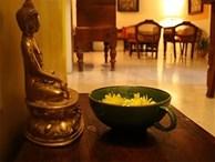 Đặt tượng Phật ở cung vị này trong nhà, gia chủ thảnh thơi cầu bình an, đón tài lộc