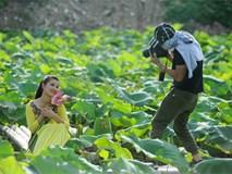 Giới trẻ Hà thành đội nắng tạo dáng với sen mất mùa