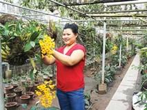 Nữ nông dân thăng hoa với lan rừng, thu vài tỷ đồng mỗi năm
