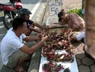 Truy tìm nguồn gốc cua biển siêu rẻ bán tràn lan ở HN