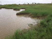 5 trẻ đuối nước ở Bắc Giang: Nỗi đau tột cùng