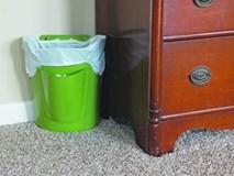 Không đặt thùng rác tùy tiện trong nhà