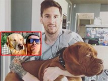 Sướng như... chó nhà sao bóng đá