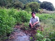 Sơn La: Nhà máy nông sản khiến... môi trường ngạt thở