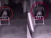 Xôn xao clip hồn lìa khỏi xác trong bệnh viện
