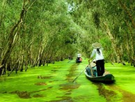 Gợi ý 3 điểm đến đẹp tuyệt ở Việt Nam bạn nên đi trong tháng 9