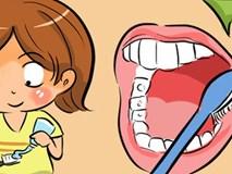 Hầu hết những cách chải răng chúng ta thường làm đều sai: Bạn có thế không?