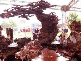 Choáng váng bộ bàn ghế giá 1,1 tỷ đồng ở Hà Nội