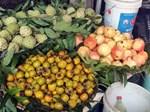 Thái Lan cảnh báo trái cây Trung Quốc rủi ro tồn dư thuốc sâu-4