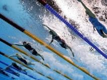 Huấn luyện viên đội bơi Hàn Quốc từ chức sau scandal quay lén vận động viên nữ