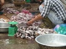 Sự thật dân Hà Nội mua vét cá thối cuối chợ
